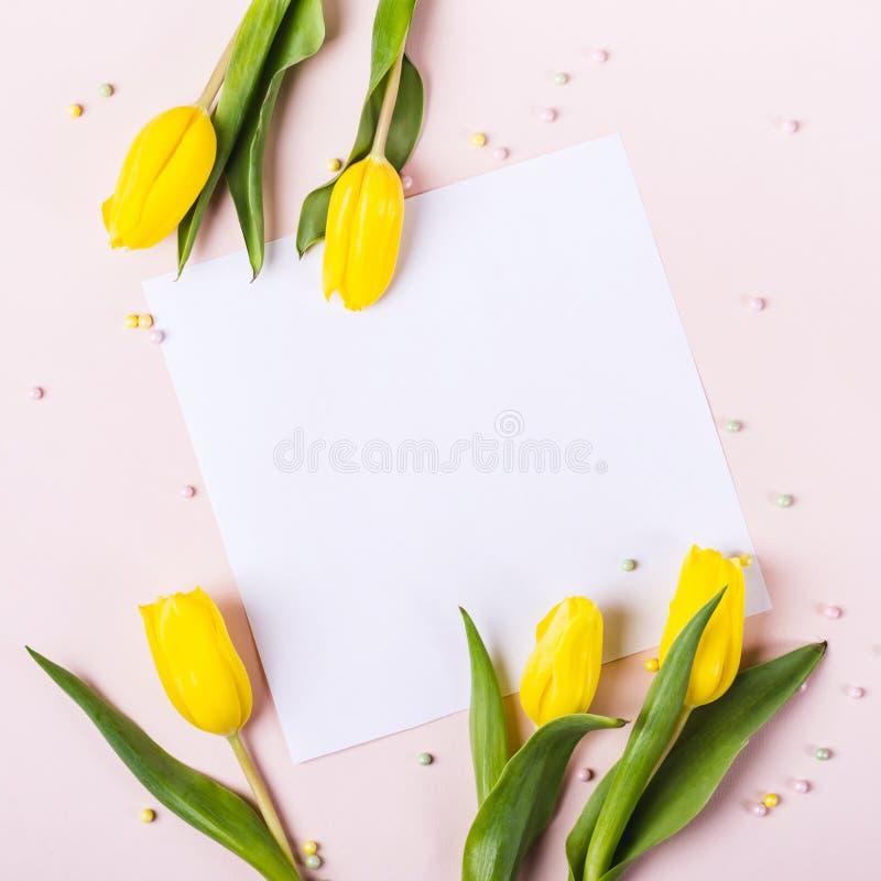 Belles fleurs jaunes de tulipe sur le fond rose en pastel pour des mots des félicitations images stock