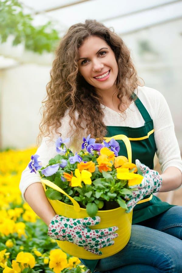 Belles fleurs prêtes pour le marché photo libre de droits
