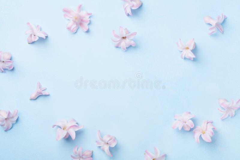 Belles fleurs roses sur la vue supérieure bleue de table Seul arbre congelé style plat de configuration Carte de voeux de jour de photo libre de droits