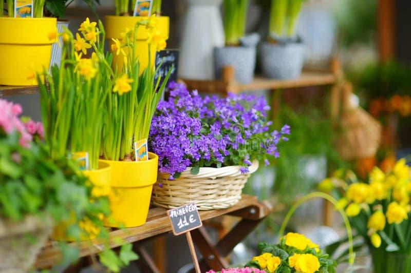 Belles fleurs vendues sur le fleuriste extérieur image libre de droits