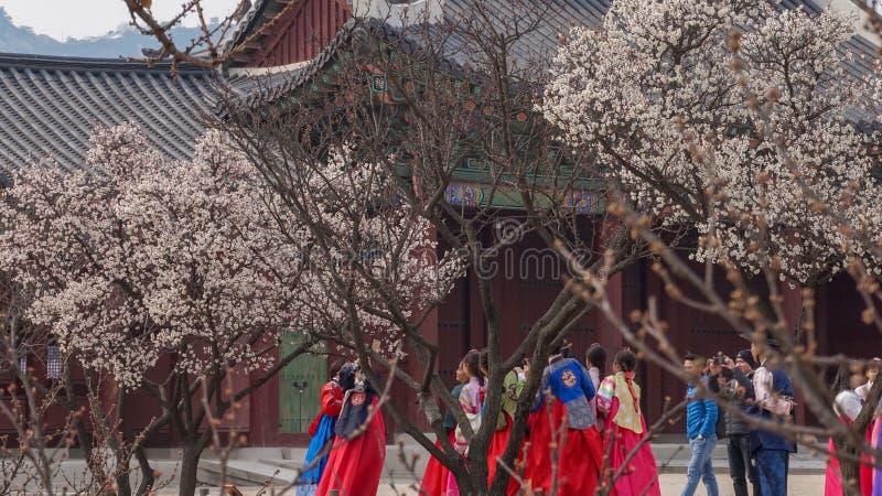 Belles images de paysage au palais Séoul, Corée du Sud de Gyeongbok image stock