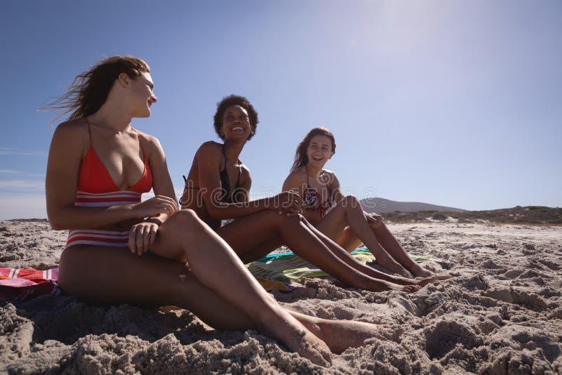 Belles jeunes femmes heureuses détendant sur la plage au soleil images libres de droits