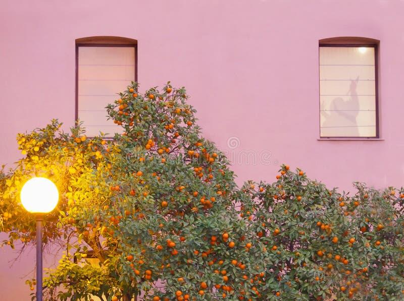 Belles lampes de conception au-dessus d'une rue en pierre le soir la vieille ville de Valence image stock