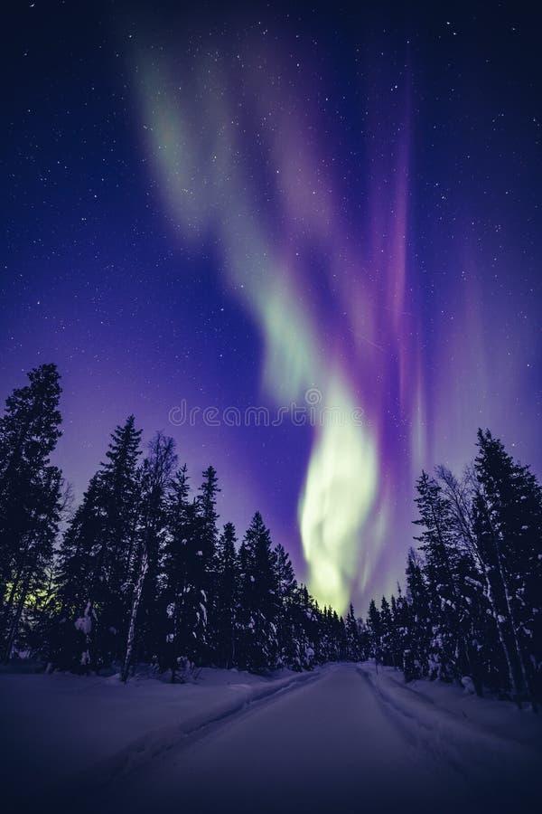 Belles lumières du nord Aurora Borealis dans le ciel nocturne au-dessus du paysage de la Laponie d'hiver, Finlande, Scandinavie image stock