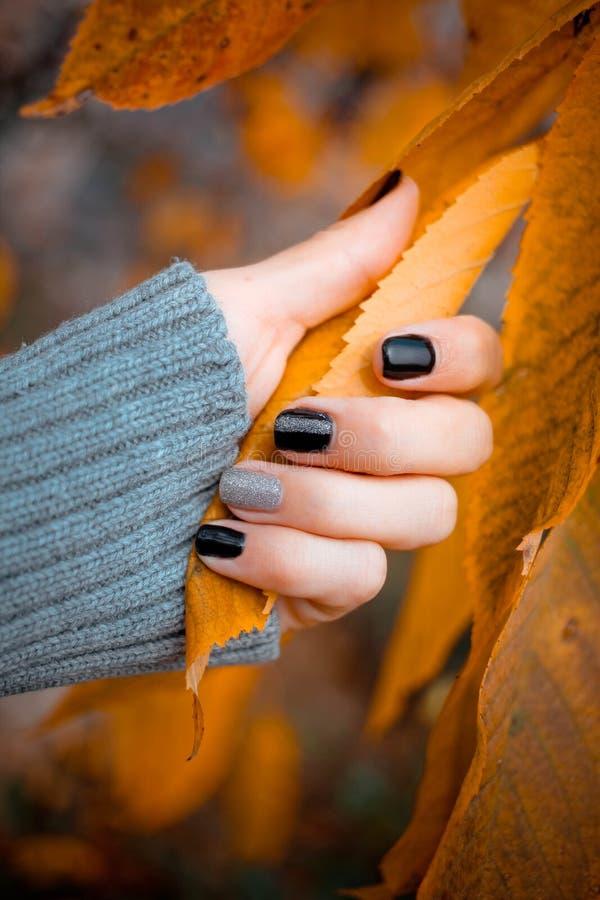 Belles mains avec des feuilles d'automne de prise de manucure Manucure - photo de traitement de beauté des ongles manicured intér photo stock