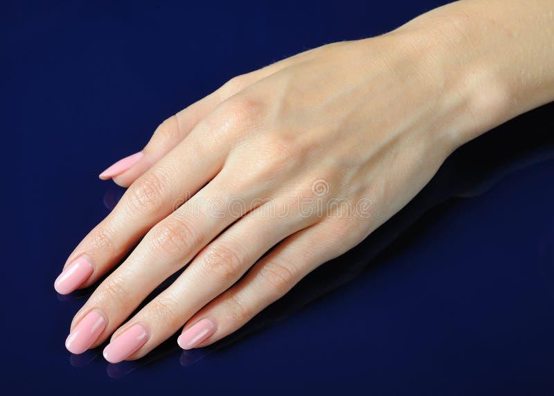 Belles mains avec la manucure parfaite de rose de clou images stock