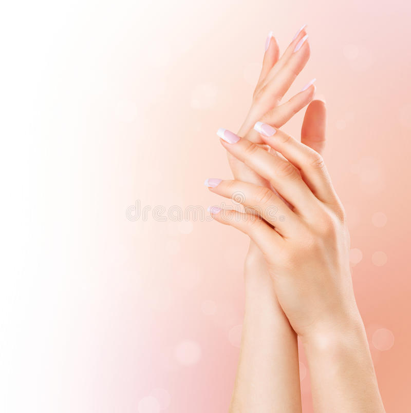 Belles mains femelles photographie stock