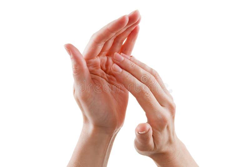Belles mains femelles d'isolement sur les applaudissements blancs de fond images stock