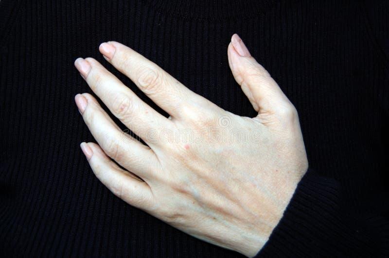 Belles mains photographie stock libre de droits