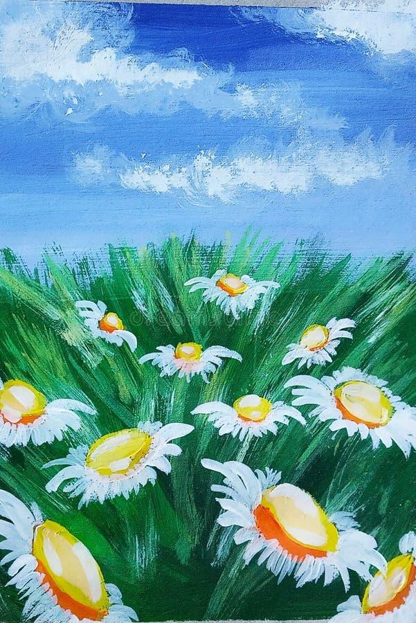 Belles marguerites sous le ciel bleu photographie stock libre de droits