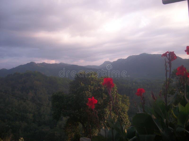 Belles montagnes au Sri Lanka images libres de droits