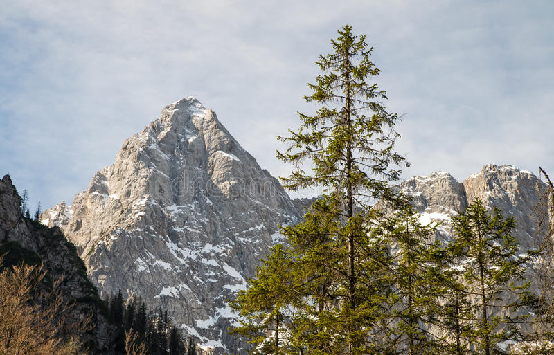 Belles montagnesde pik de Å avec sa forme unique en Julian Alps photo libre de droits