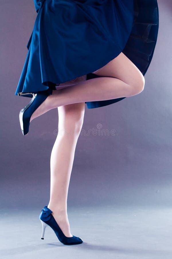 Belles pattes photo stock