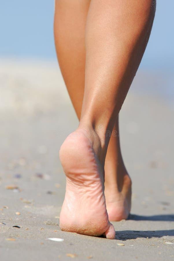 Belles pattes de femme image stock