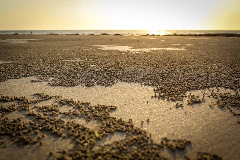 Belles perles de plage de câble images libres de droits