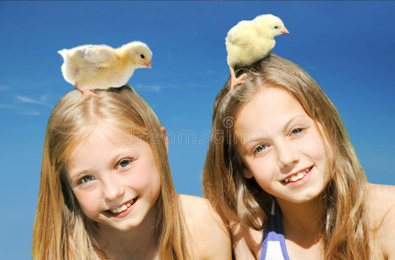 Belles petites filles jouant avec des poussins photo libre de droits