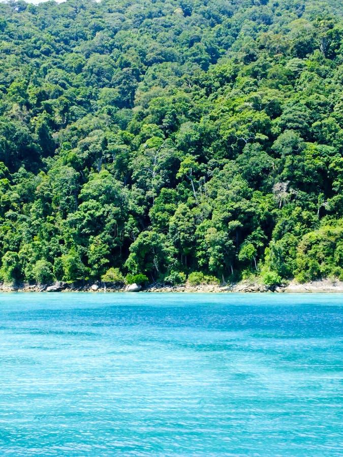 Belles plage et forêt tropicale tropicales en mer d'Andaman, Thaïlande photos stock