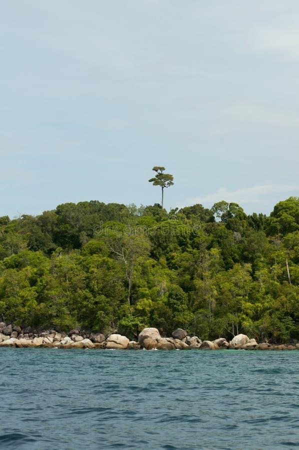 Belles plage et forêt tropicale tropicales en mer d'Andaman, Thaïlande photographie stock