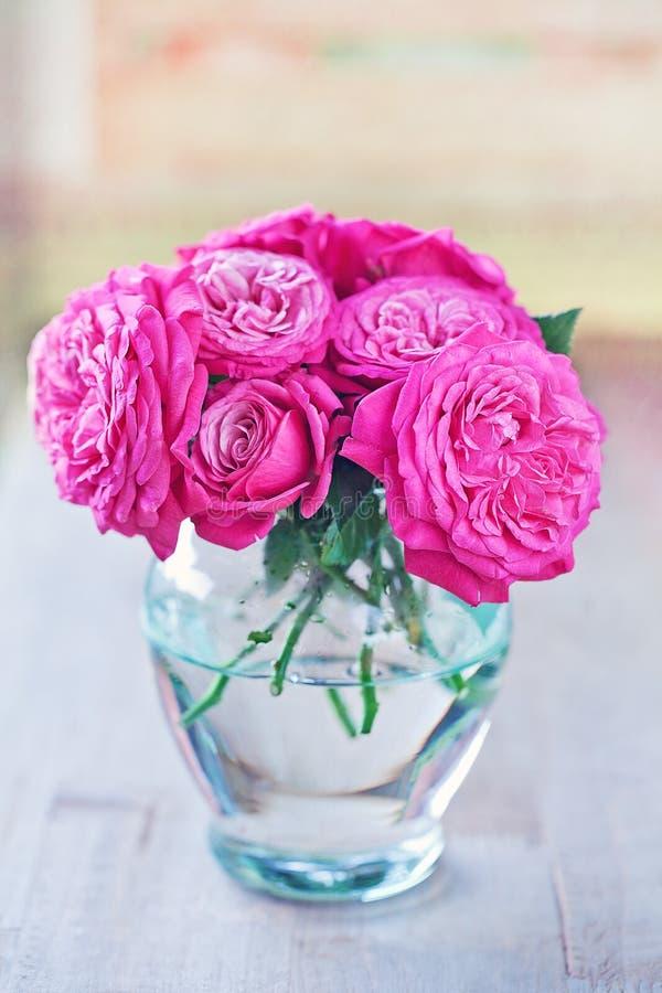 Belles roses fraîches photos stock