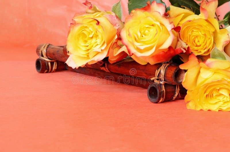 Belles roses jaunes photos stock