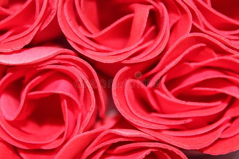 belles roses roses image libre de droits