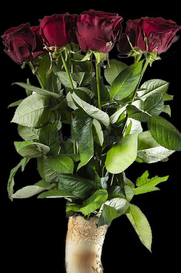 Belles roses rouges dans le vide noir image stock