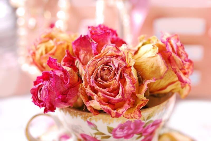 Belles roses sèches dans la tasse de thé de porcelaine photographie stock libre de droits