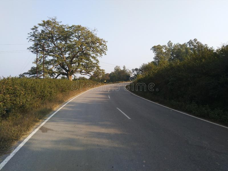 Belles routes avec greenary images stock