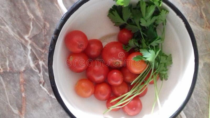 Belles tomates rouges et feuilles vertes d'un persil images stock