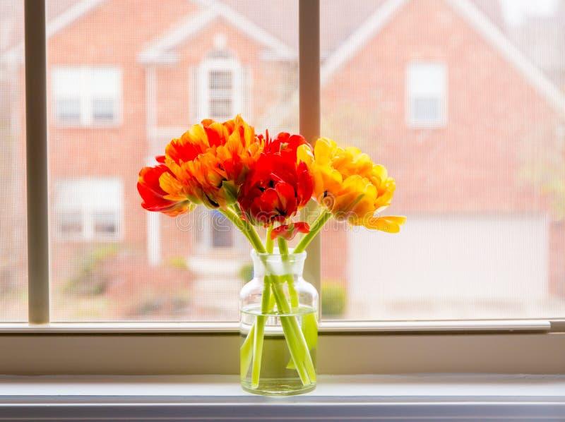 Belles tulipes dans le vase sur la fenêtre avec la moustiquaire photos stock