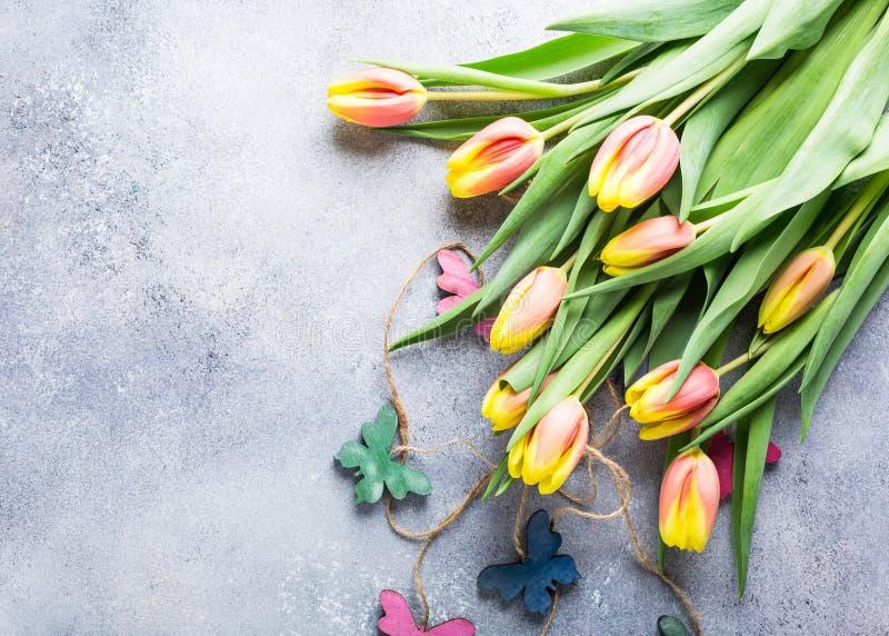 Belles tulipes jaune-orange photographie stock libre de droits