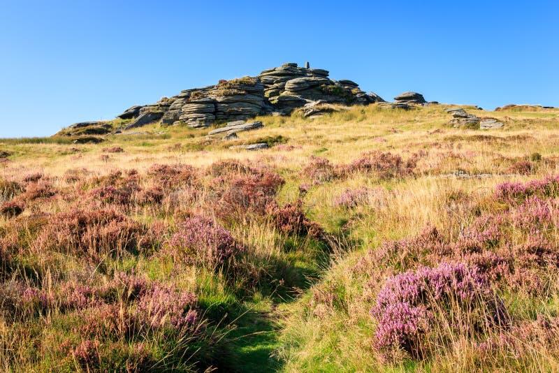 Bellever Tor Dartmoor zdjęcie stock