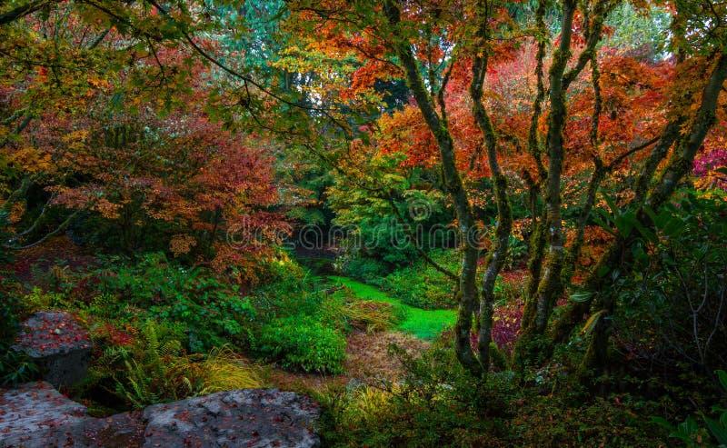 Bellevue Botanische Tuin, Washington State royalty-vrije stock afbeeldingen