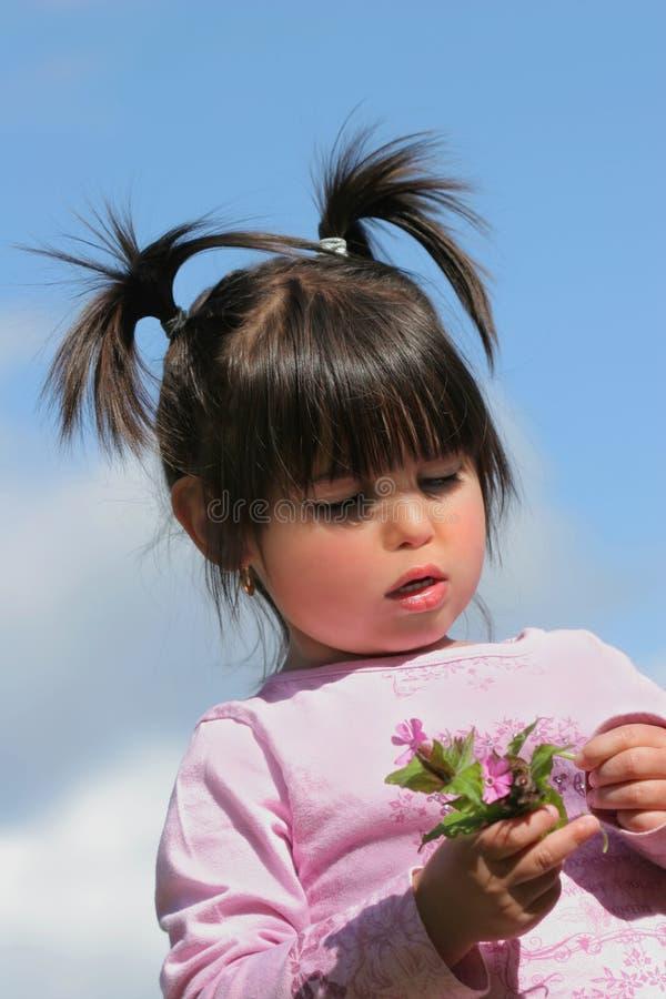 Belleza con las flores salvajes fotos de archivo