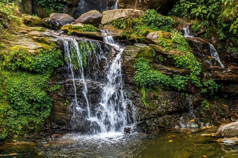 Belleza de cascadas minúsculas en el jardín de piedras darjeeling imagen de archivo libre de regalías