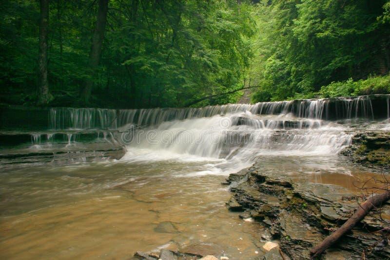 Download Belleza de la cascada foto de archivo. Imagen de serene - 181544