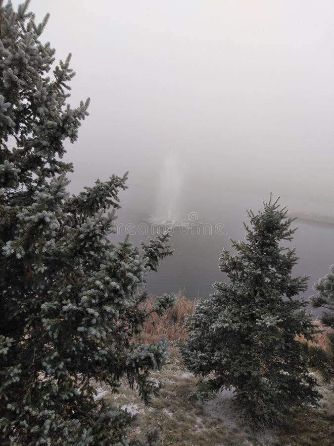 Belleza de la orilla del lago imagen de archivo libre de regalías