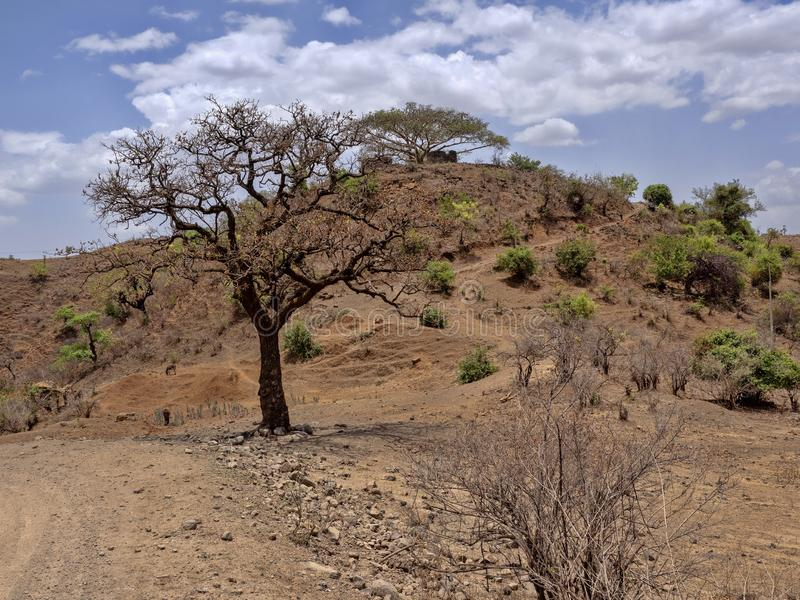 Belleza de un paisaje montañoso en Etiopía septentrional fotos de archivo