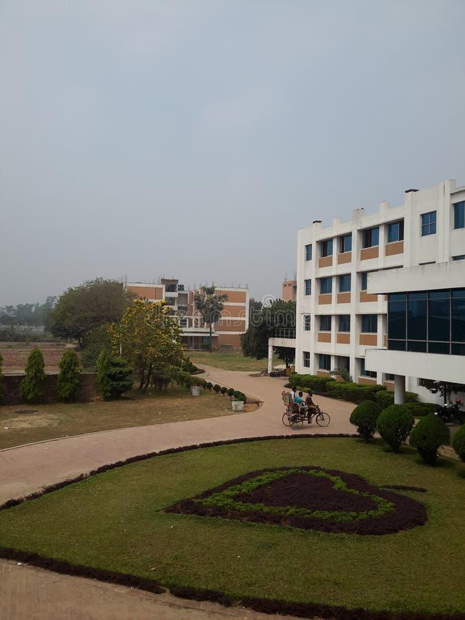 Belleza del campus foto de archivo