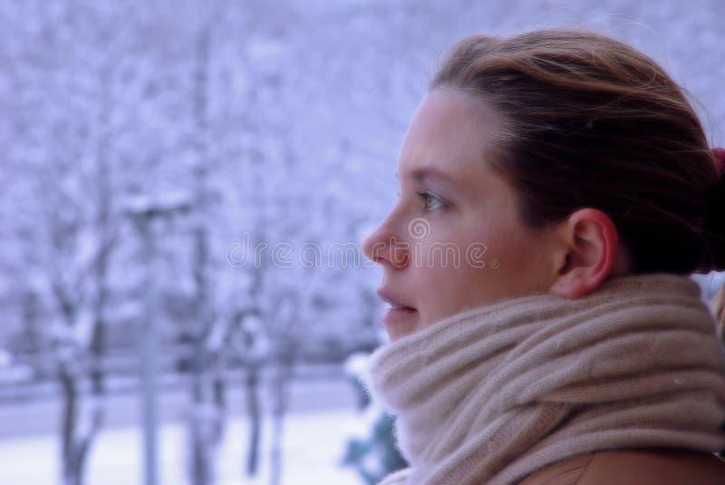 Belleza del invierno foto de archivo libre de regalías