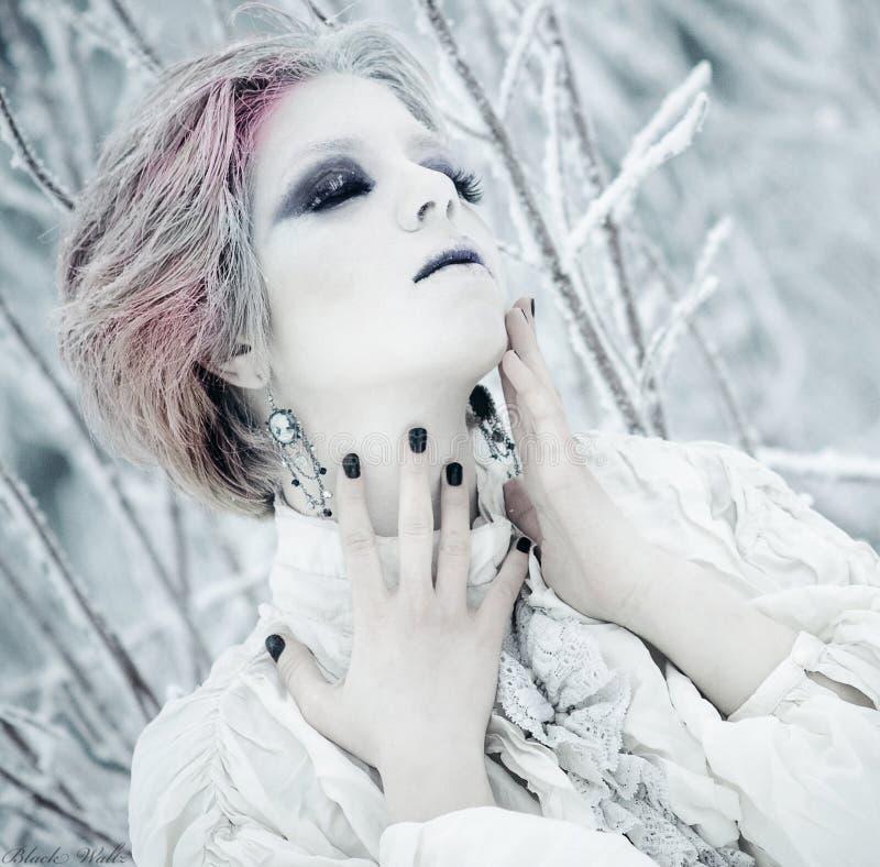 Belleza del invierno de la reina del hielo imagen de archivo libre de regalías