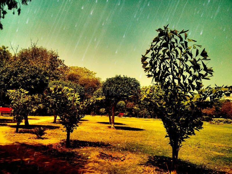 Belleza del jardín imagenes de archivo