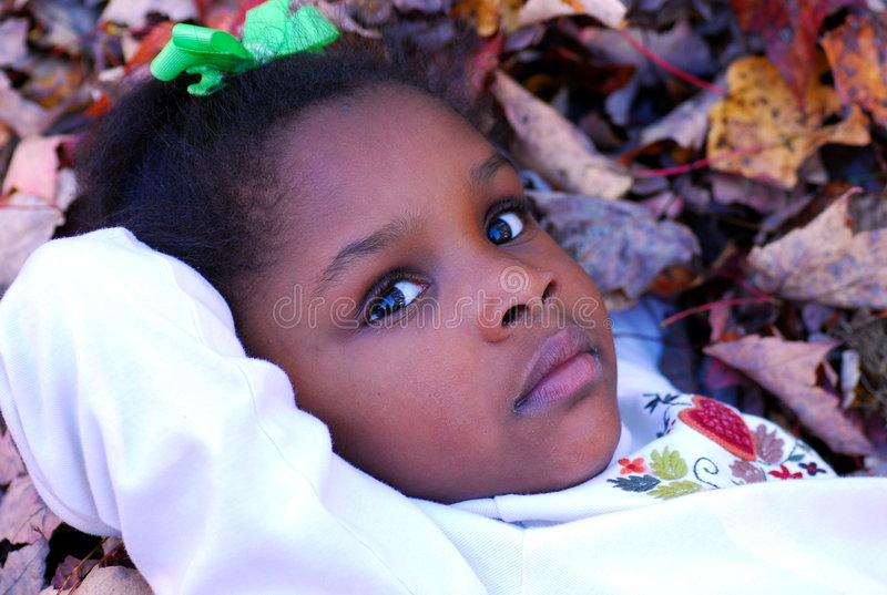 Belleza del otoño foto de archivo libre de regalías