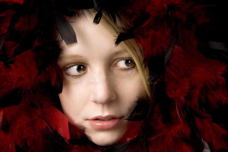 Belleza en plumas imagen de archivo libre de regalías