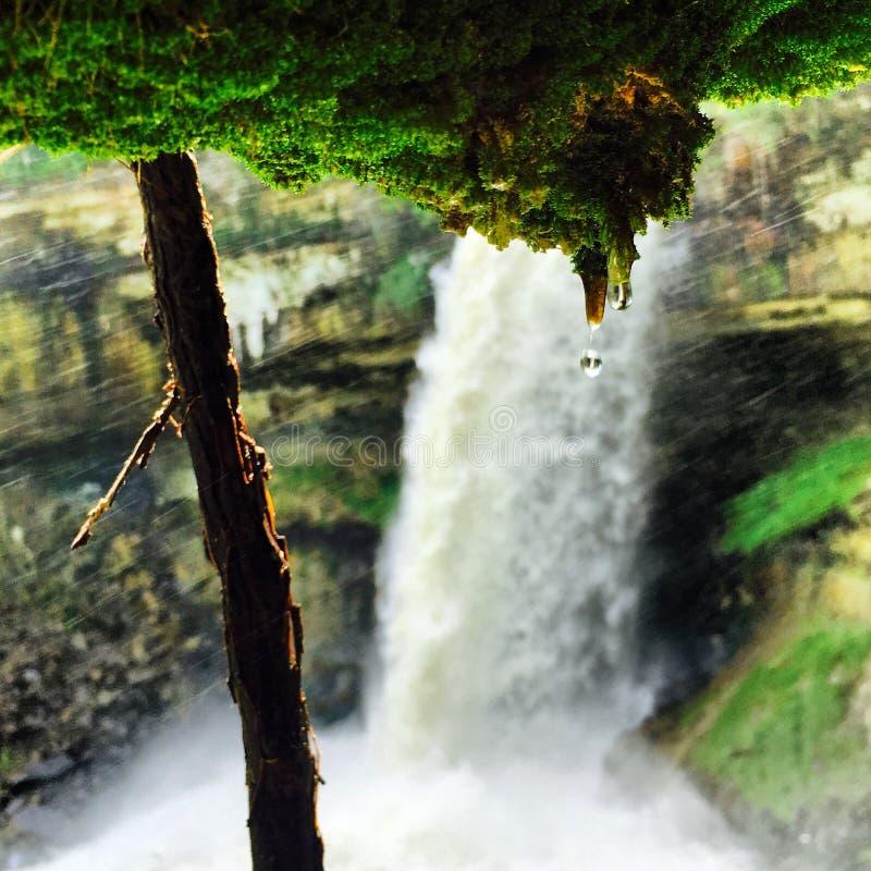 Belleza Minnesota del verde de la lluvia de la cascada imagenes de archivo