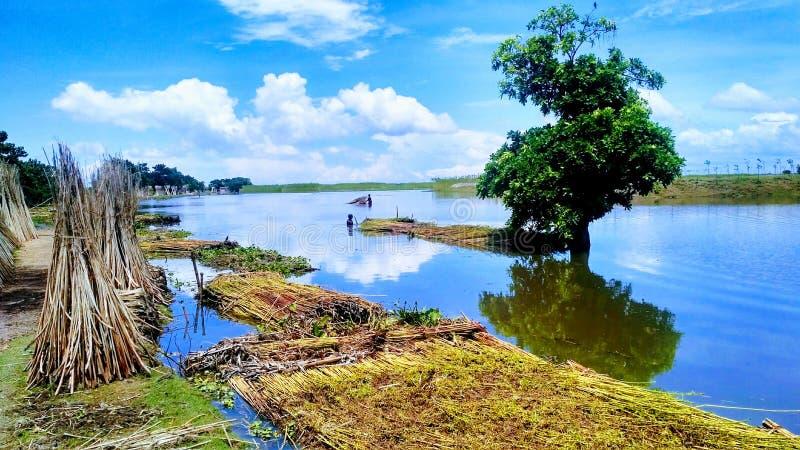 Belleza natural de Bangladesh imagen de archivo