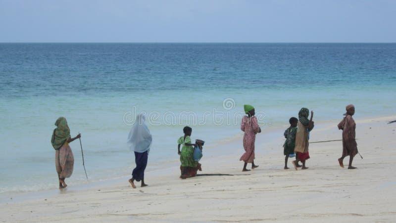 Bellezas de Zanzibar imagenes de archivo