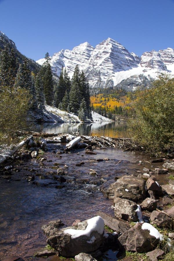 Bellezas marrón Colorado foto de archivo libre de regalías