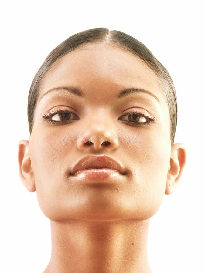 Bellezza Afroamerican. immagine stock libera da diritti