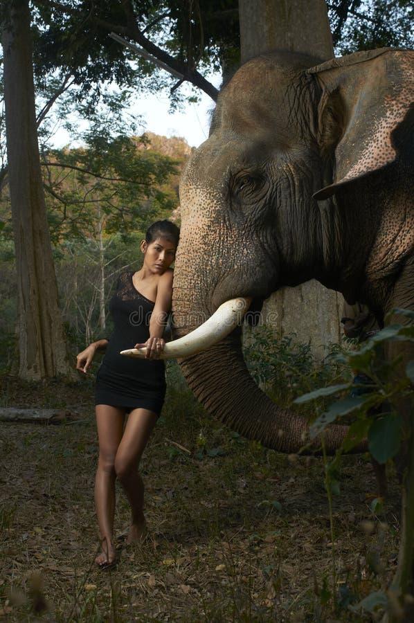 Bellezza asiatica con l'elefante amichevole immagine stock